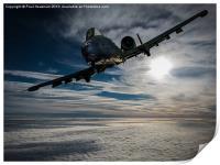 A-10 Thunderbolt II, Print