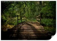 Bridge Over The Woodland River, Print