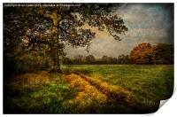 Tidmarsh Meadows in Autumn, Print