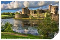 Caerphilly Castle Moat, Print