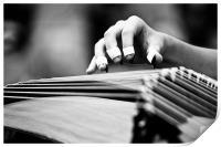 Guzheng Musical Instrument, Print