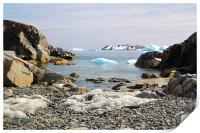 Cierva Cove Antarctica, Print