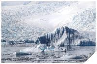 Cierva Cove Iceberg & Glaciers, Print