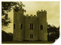 Blaise Castle Vintage, Print