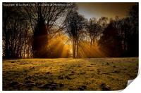Winter rays, Print