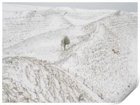 South Ramparts of Maiden Castle, Dorset,UK, Print