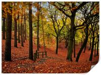 The stepped autumn pathway, Print