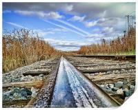 The Steel Rail Blues., Print