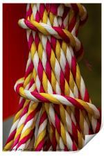Rope Helter Skelter, Print
