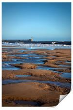 February on the beach, Print