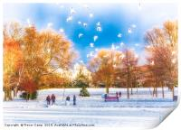 Snow Fun in the Park, Print