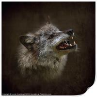 Big Bad Wolf, Print