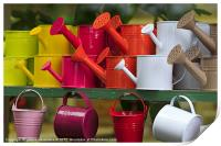 Colourful Watering Cans, Print