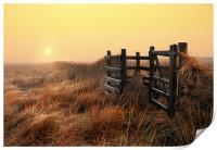 Moorland sunrise, Print