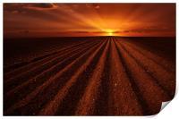 Ploughmans sunset, Print