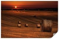 Harvest sunset, Print