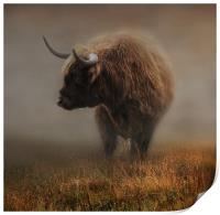 West highland cow, Print
