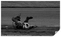 Snetterton racetrack,, Print