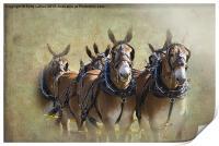 Old West Mule Train, Print