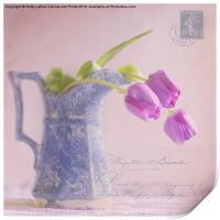 des tulipe, Print