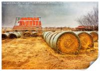 Slumbering in the Countryside, Print