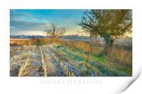 Worcestershire, Print