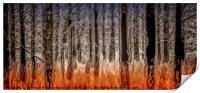 The Burnt Trees of Torridon, Print