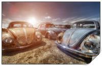 Bugs in the Sun, Print