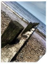 Beach 2, Print