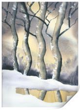 Frozen Forest, Print