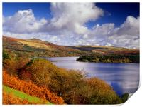 Burrator Reservoir, Print