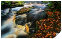 River Rivelin Waterfalls, Print