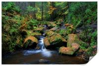 Wyming Brook with Autumn Colours, Print