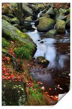 Autumn Colours in Padley Gorge, Print