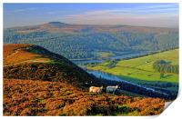Ladybower Lookout, Print