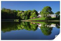 Crookes Valley Park Mirror Image, Print