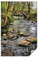 River Rivelin & Roscoe Bridge, Print