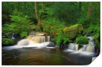 Third Coppice Weir, Rivelin , Print