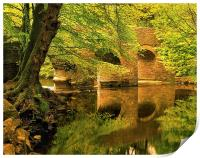 River Plym at Plymbridge, Print