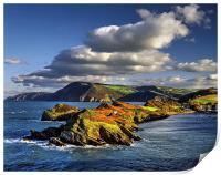 Watermouth Cove, North Devon , Print