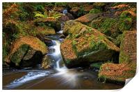 Wyming Brook Falls in Autumn, Print
