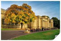 Weston Park Museum in Autumn, Print