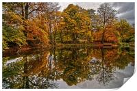 Lumsdale Autumn Reflections , Print