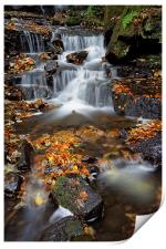 Lumsdale Waterfalls with Autumn Leaves , Print