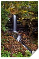 Cascading Falls in Lumsdale , Print