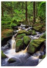 Wyming Brook                               , Print