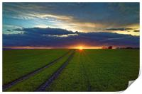 Penny Hill Farmland Sunset, Print