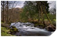 River Rothay                               , Print