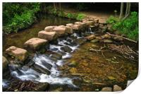 Endcliffe Park Stepping Stones and Falls          , Print
