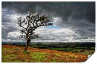 Dark Clouds over Combestone Tor                   , Print